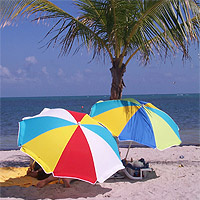 Beach umbrellas on Key Biscayne Beach, Crandon Park, Key Biscayne